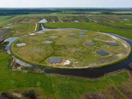 LOFAR telescope features on Science.com and Nature.com