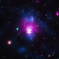Witnessing the birth of a cosmic (radio) phoenix